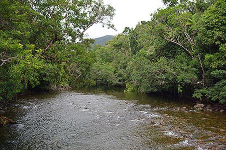 Active Tropics Ecotourism