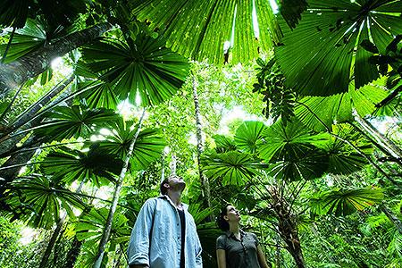 Active Tropics Explorer Ecotourism