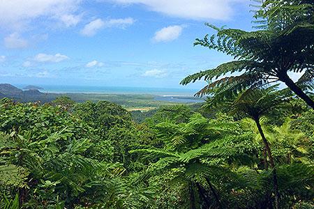 Active Tropics Explorer Climate Change Action